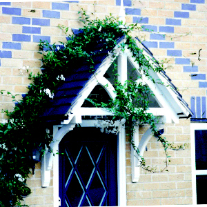An A frame 'Ashcombe' door canopy painted white with green foliage intertwined.
